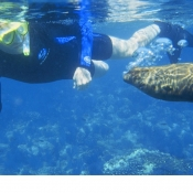 ES Sean snorkeling with sea lion 9x6