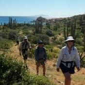 IH hiking Catalina 9x6