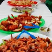MB shrimp and lobster