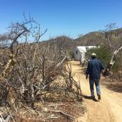 FSS walking to tent in desert