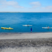 MB kayakers along shore in front of camp