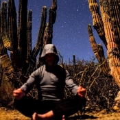 Wellness meditation with starry night and cactus
