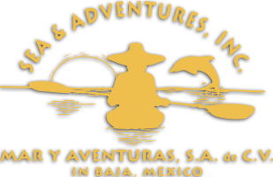 Sea & Adventures/Mar Y Aventuras